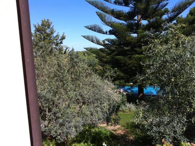 alghero - vessus - vakantie sardinie.jpg