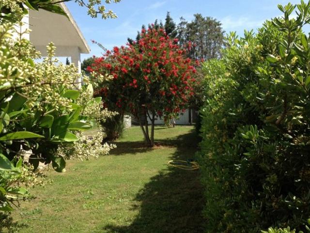 villa-sardinie-vakantiehuis-aloe (7).png