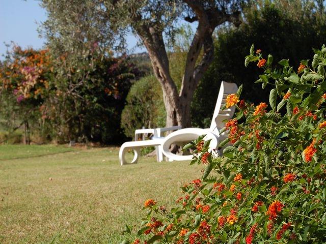 vakantiehuis sardinie - villa baia chia - villas sardinia (30).jpg