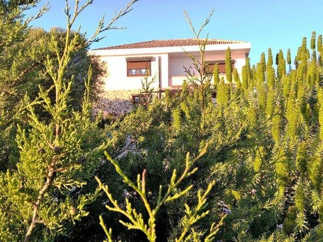 arcamyrtus - vakantie op sardinie.jpg
