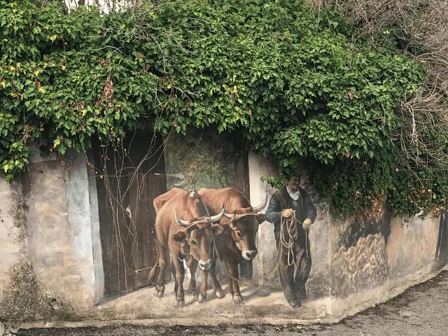 muurschilderingen in fonni.png