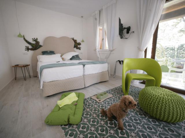 dog-friendly sardinie - giada di  geco suites in noord sardinie.png