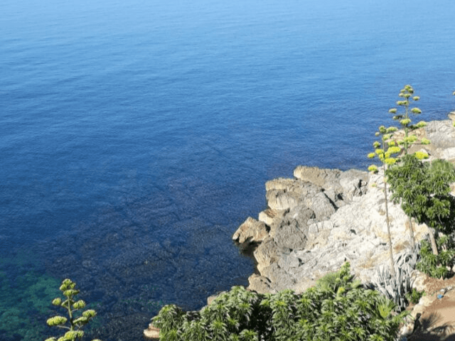 villa grachira alghero - sardinie (4).png