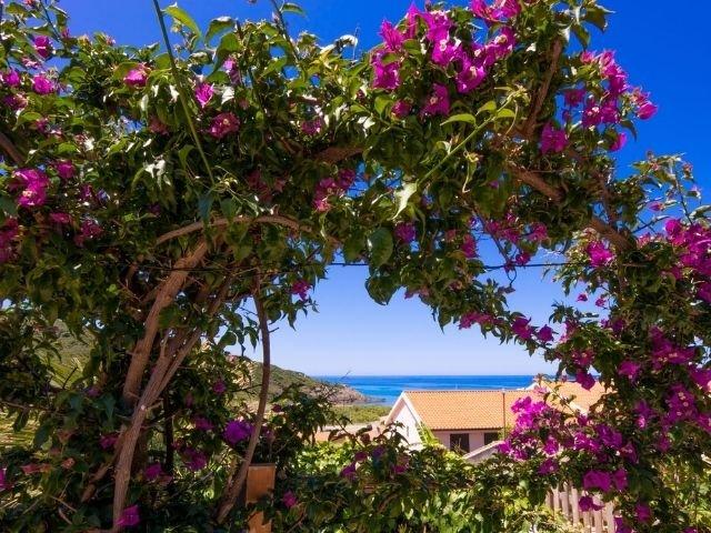 casa la nassa di porto alabe, sardinien - sardinia4all (13).jpg