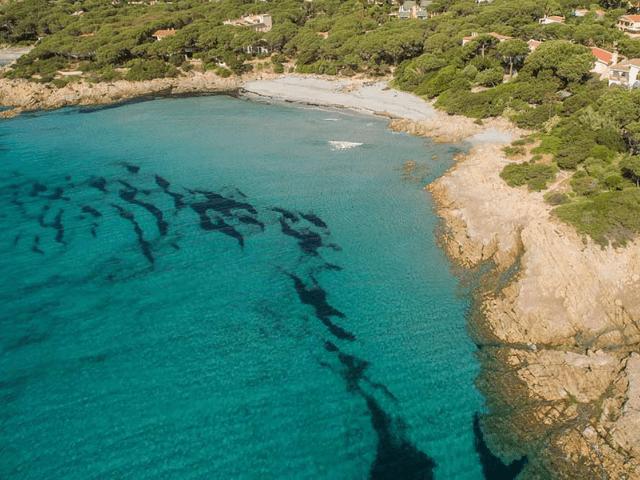vakantiehuisje orosei, sardinie - ibisco 3 - sardinia4all (1).png