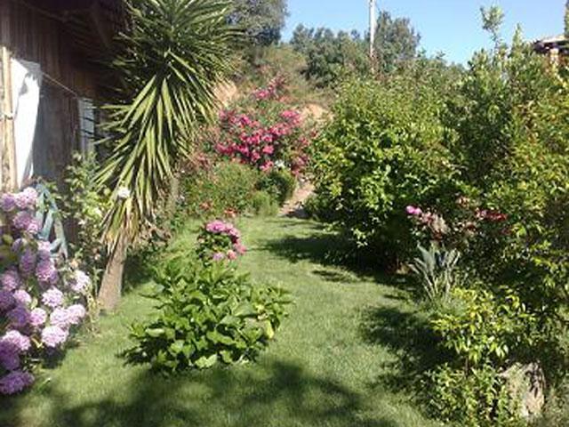 Tuin - Agriturismo La Quercia - Arbus - Costa Verde - Sardinië