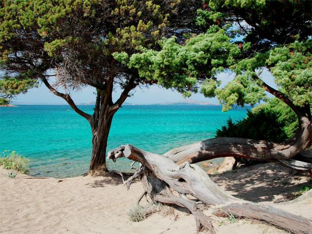 Vakantiepark Isuledda - Camping Sardinie (1)