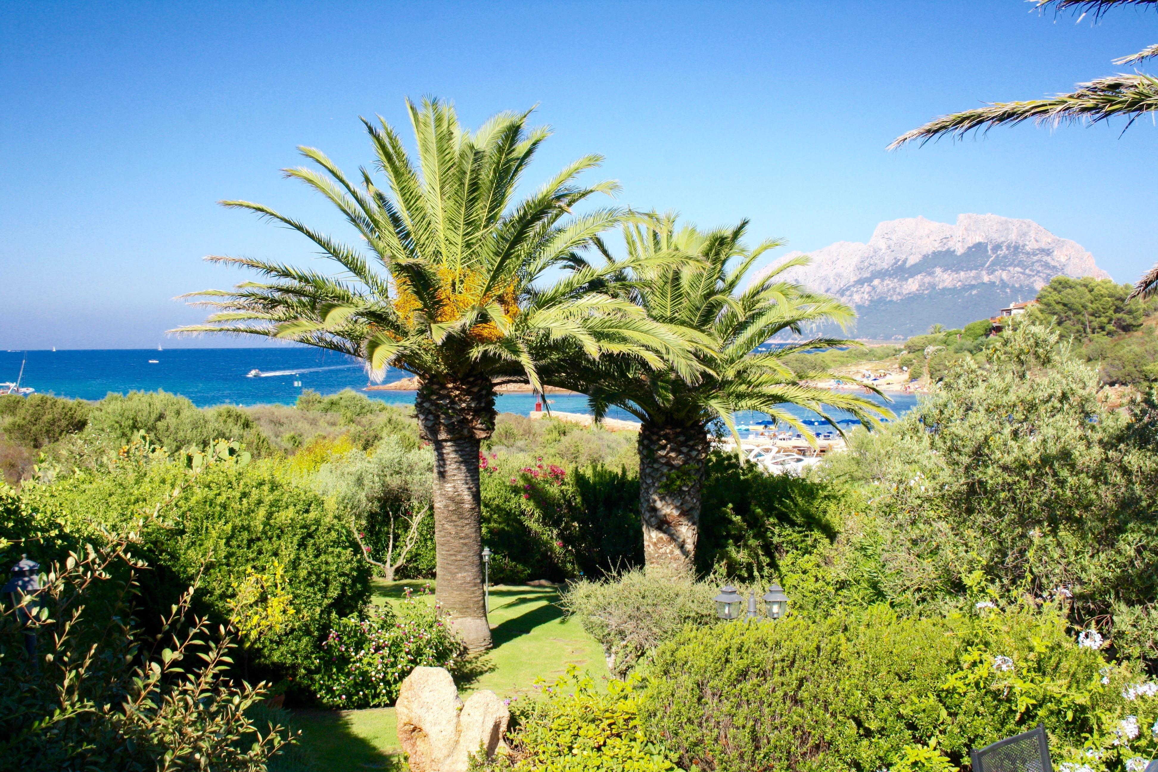 Villa Costa Corallina - Luxe villa Sardinie