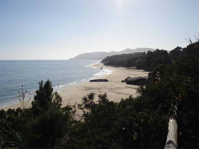 De vakantiehuisjes bevinden zich op kleine afstand van het strand